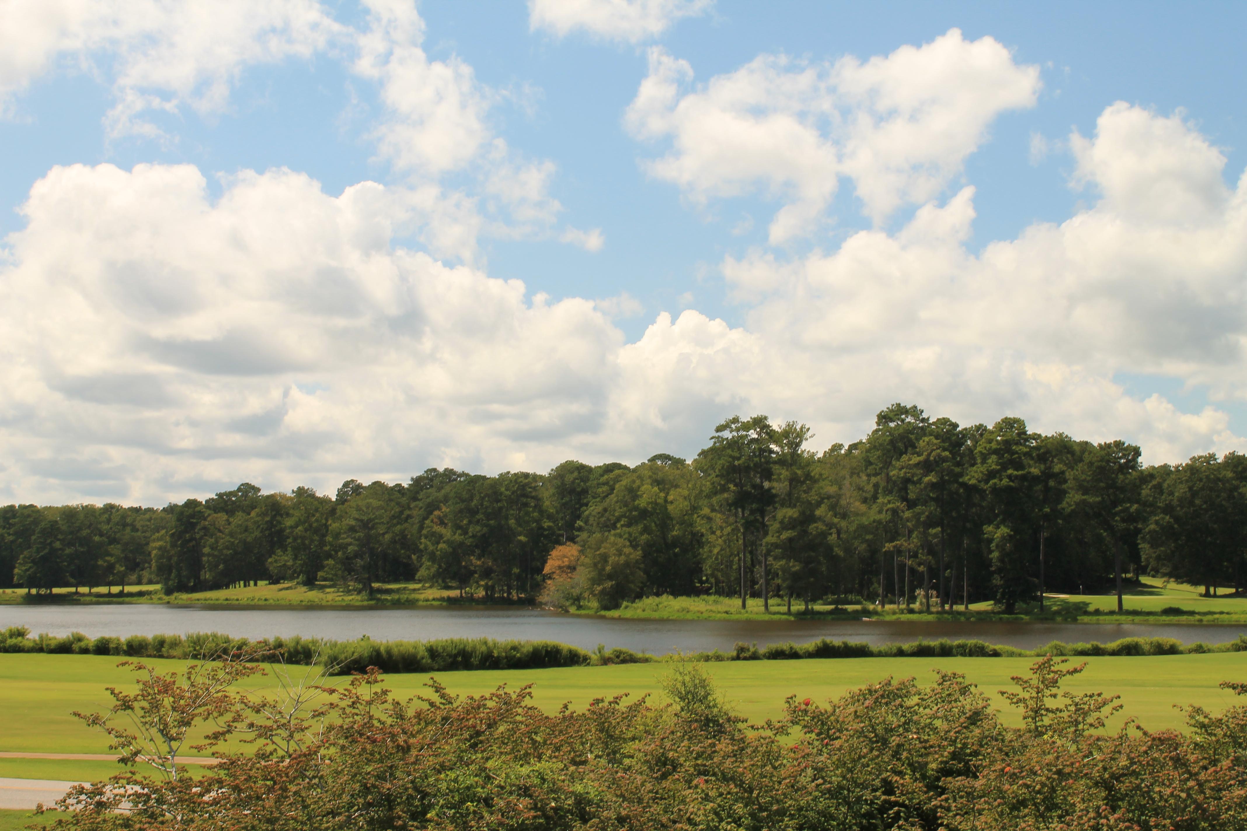 Callaway Gardens Golf Course Thomas Vasas Photography