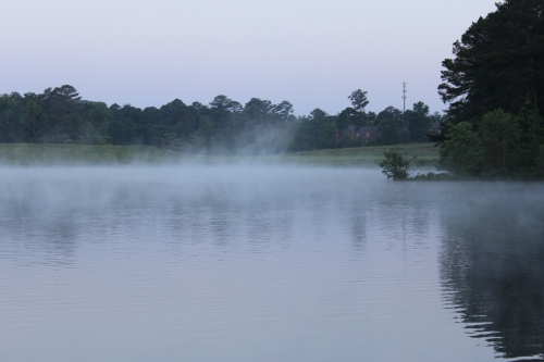 The Foggy Mist Reflection