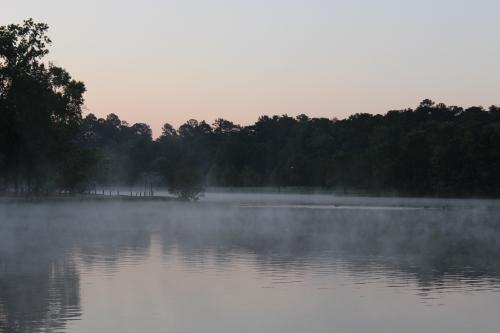 The Misty Sunrise