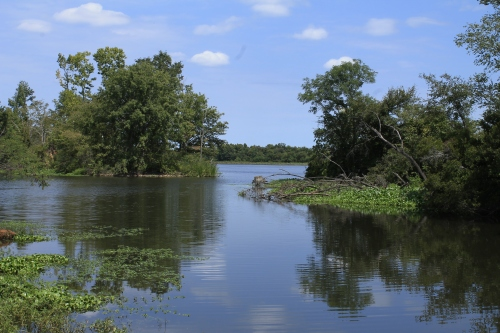 The Lake #1